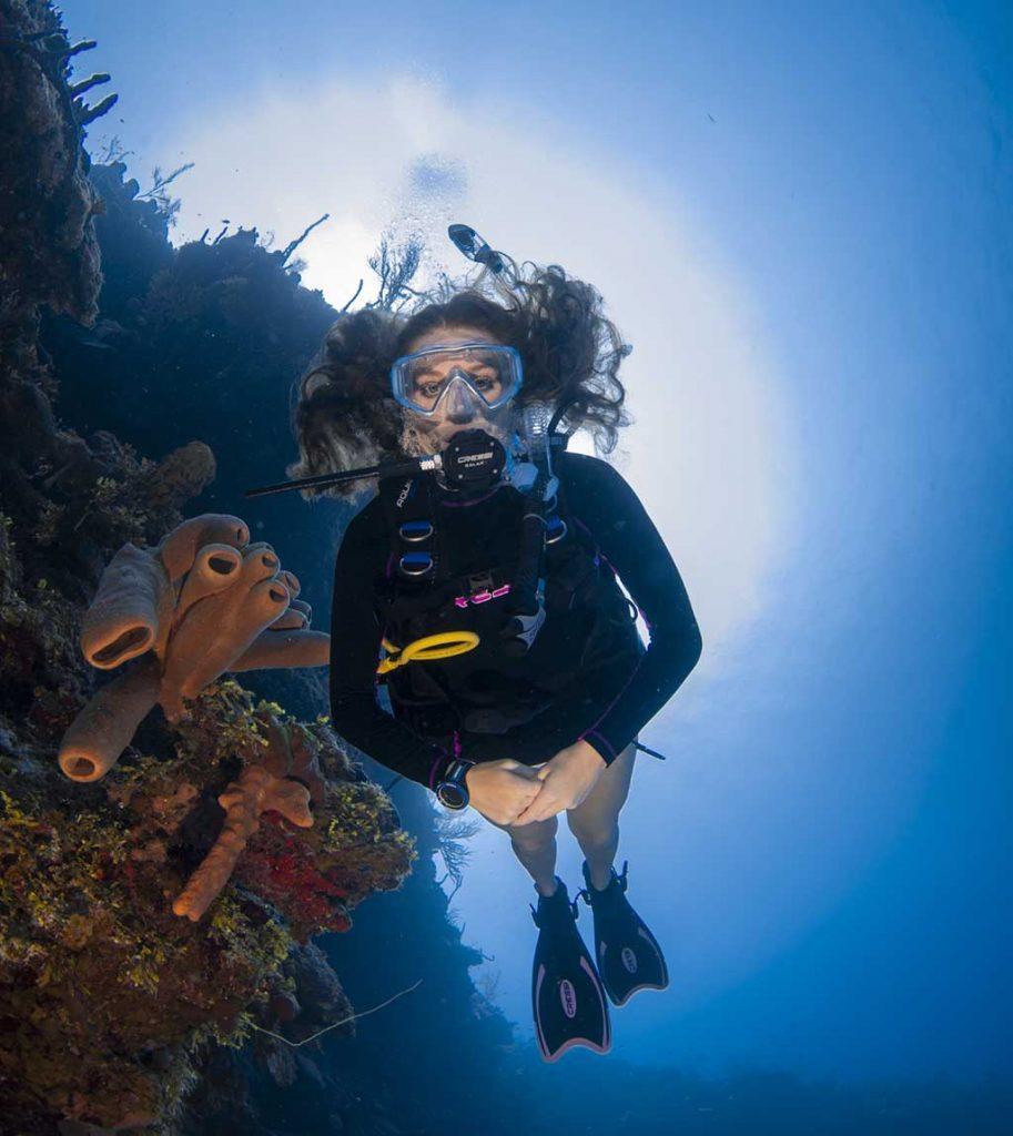 Grand Cayman North Wall Diving